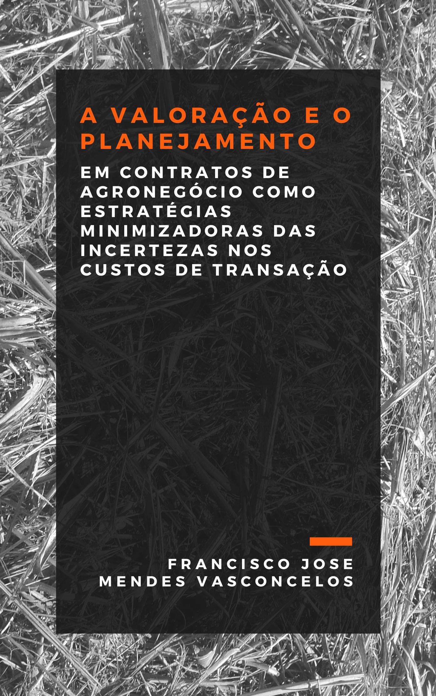 Capa do ebook A VALORAÇÃO E O PLANEJAMENTO EM CONTRATOS DE AGRONEGÓCIO COMO ESTRATÉGIAS MINIMIZADORAS DAS INCERTEZAS NOS CUSTOS DE TRANSAÇÃO.